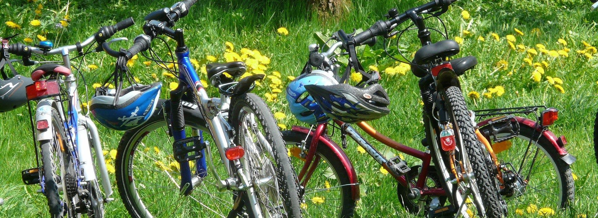 Location de Vélos Tarascon Sur Ariège - Point Glisse