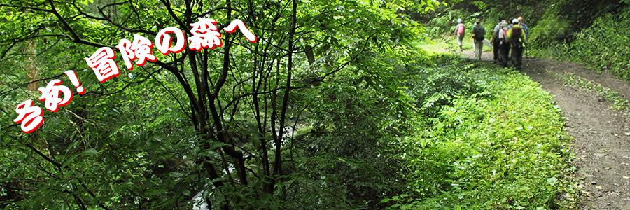 こげさわ渓谷冒険の森の会