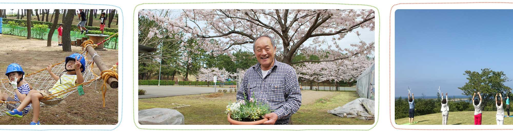 テクノポート福井総合公園で寄せ植え