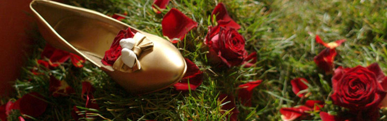 Hochzeit-Tauben, Tauben für Ihr Fest