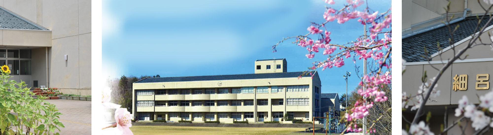 梅の木が映える細呂木小学校の校舎です