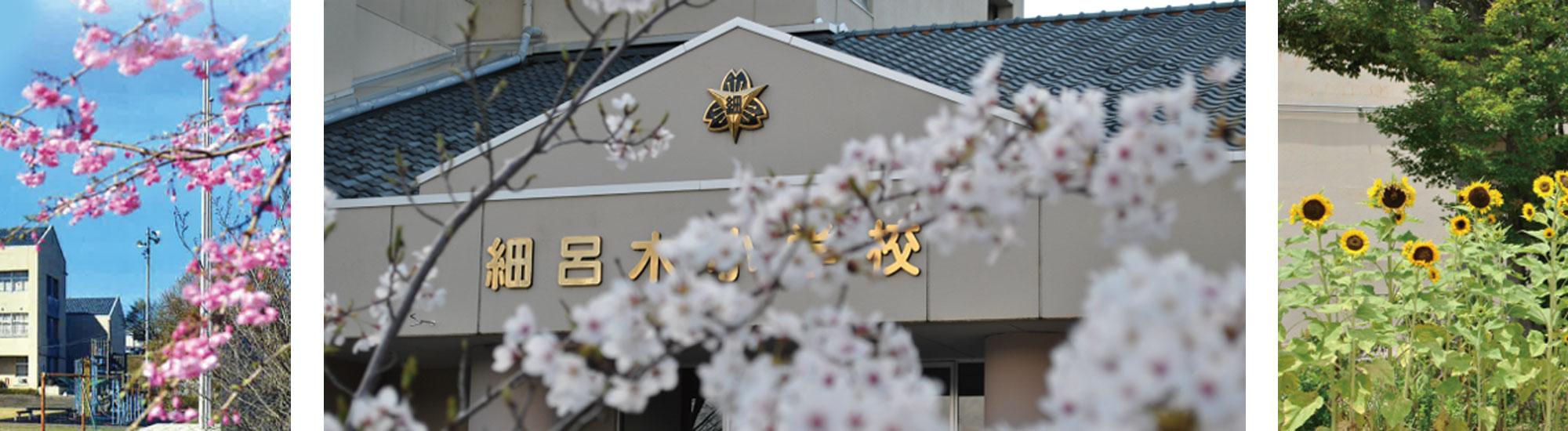 細呂木小学校の玄関には桜の花が咲き乱れます