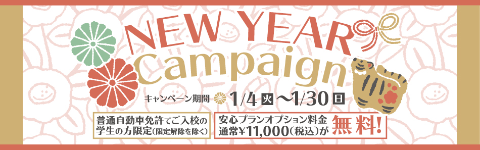Newyear Campaign