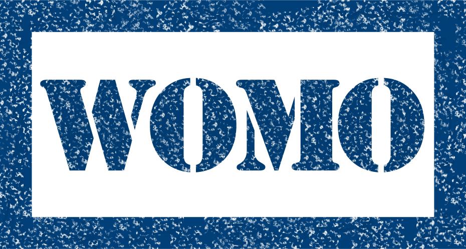 lehnenSchluepfer Womo