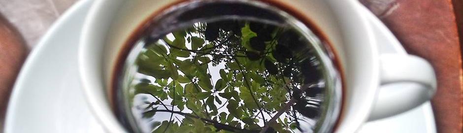 コバコーヒーKobacoffee