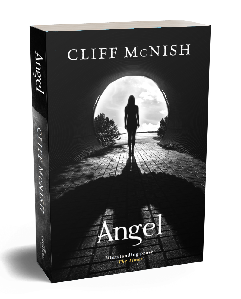 Angel paperback edition 2019