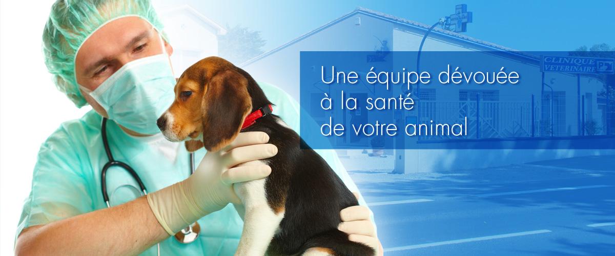 Vétérinaires à Lunel