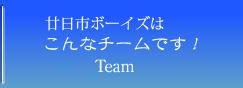 広島廿日市ボーイズトップ