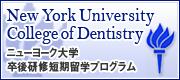 ニューヨーク大学卒業研修短期留学プログラム