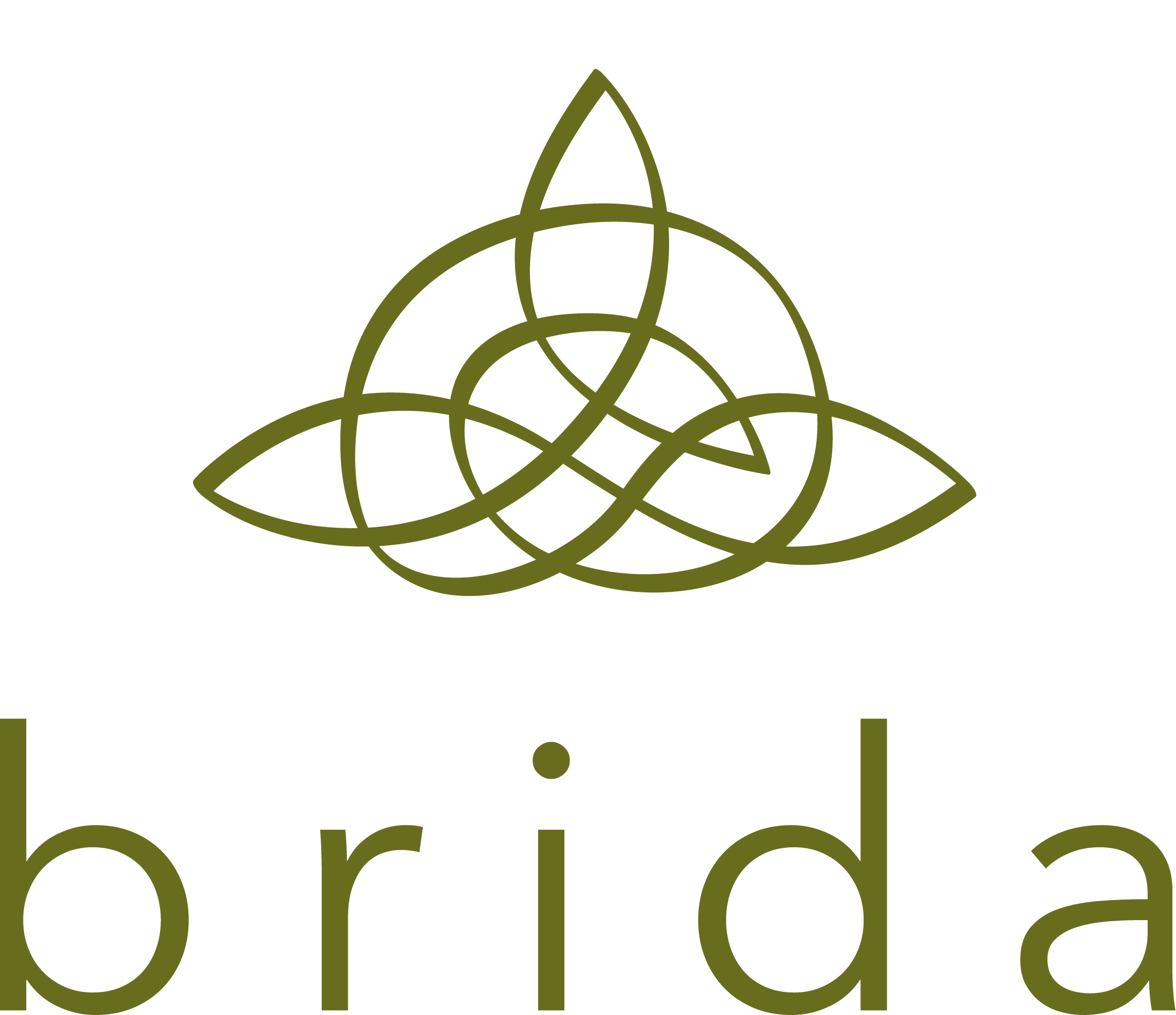 Brida Consulting Coaching