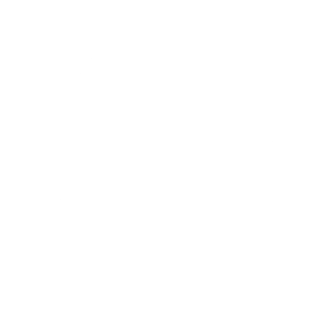 BUREAU VERITAS QUALITY INTERNATIONAL - Normas ISO 9002