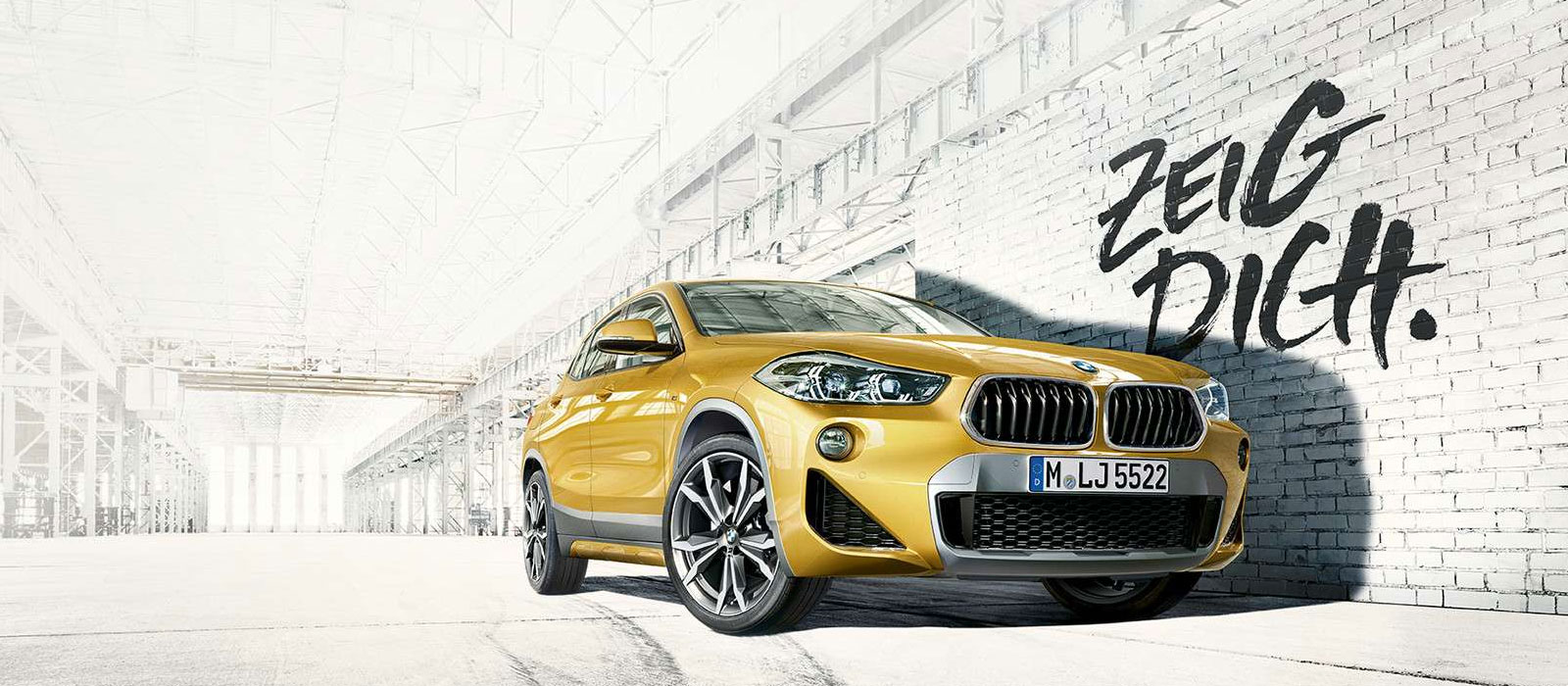 BMW Wagner - BMW X2 Angebot