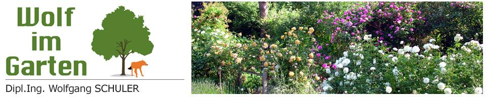 Gartengestaltung und Baumpflege