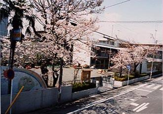 江川幼稚園1
