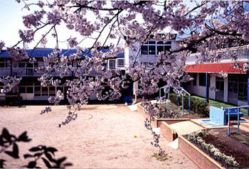 ひばり幼稚園1