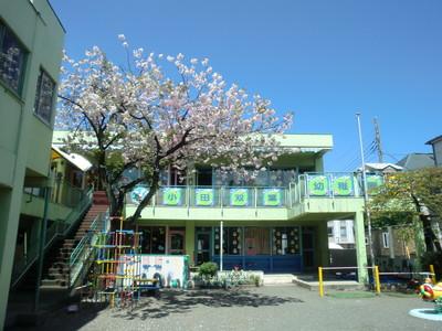小田双葉幼稚園1