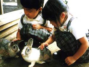 菅幼稚園2