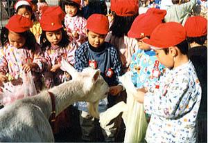 すみのえ幼稚園3