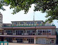 高津幼稚園1