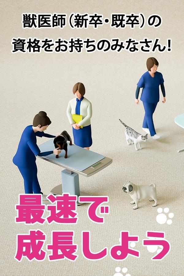 獣医学生(就活・新卒)獣医師の資格をお持ちのみなさん! 当院で働いてみませんか!