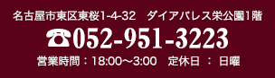 電話番号052-951-3223
