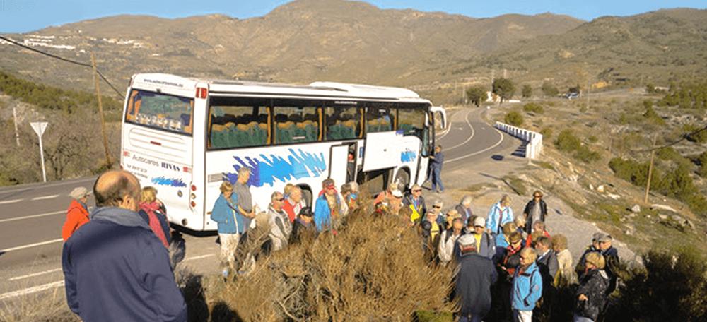 Bild Busfahrten