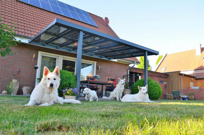Solarterrassendach Alu Hannover