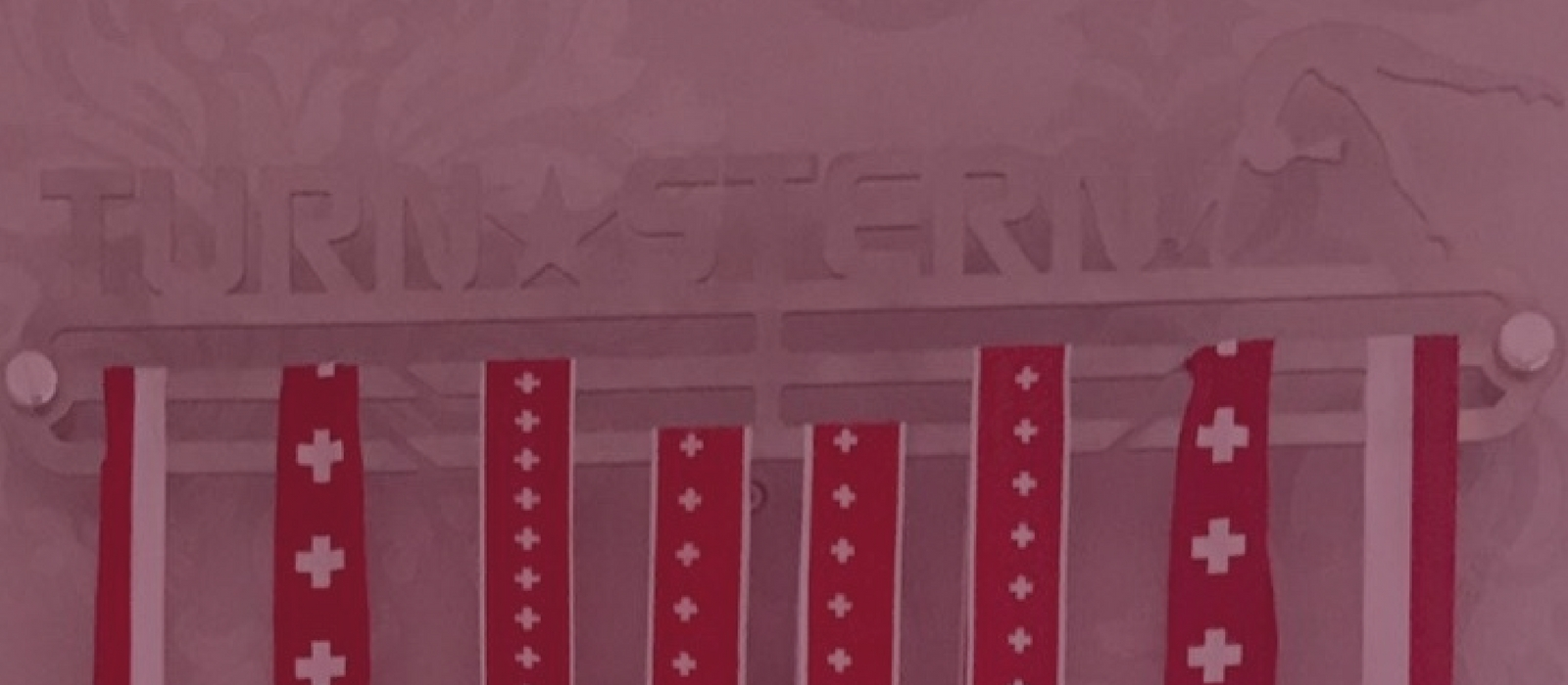 Stilvoller Medaillenhalter für Gymnastics in Edelstahl