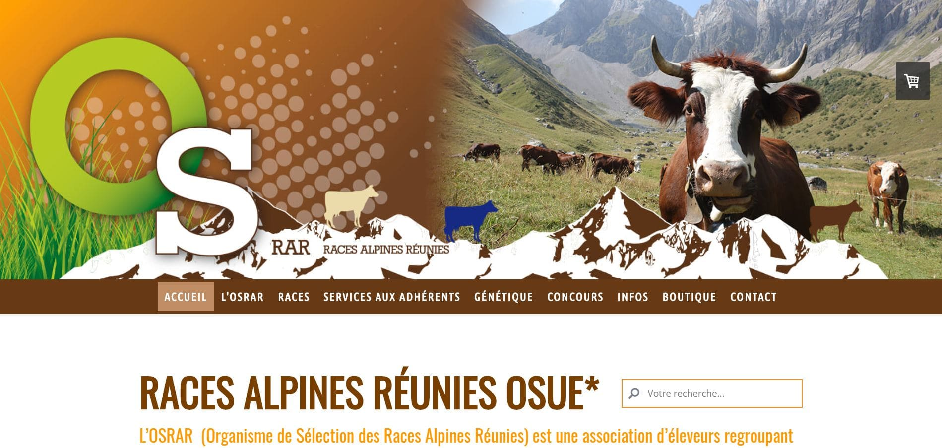 Page d'accueil du site de l'Osrar