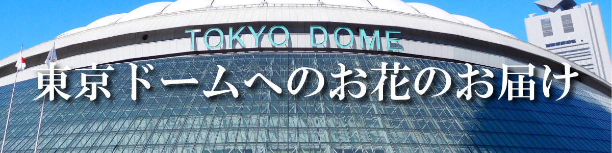 東京ドームへのお届け