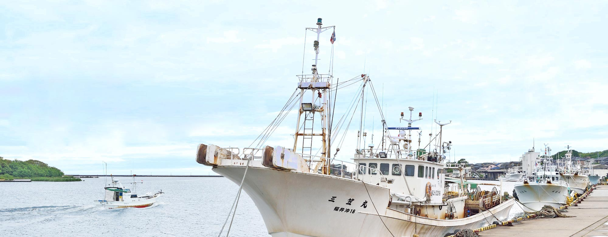 港で水揚げされた日本海の魚介類を提供する真洋水産