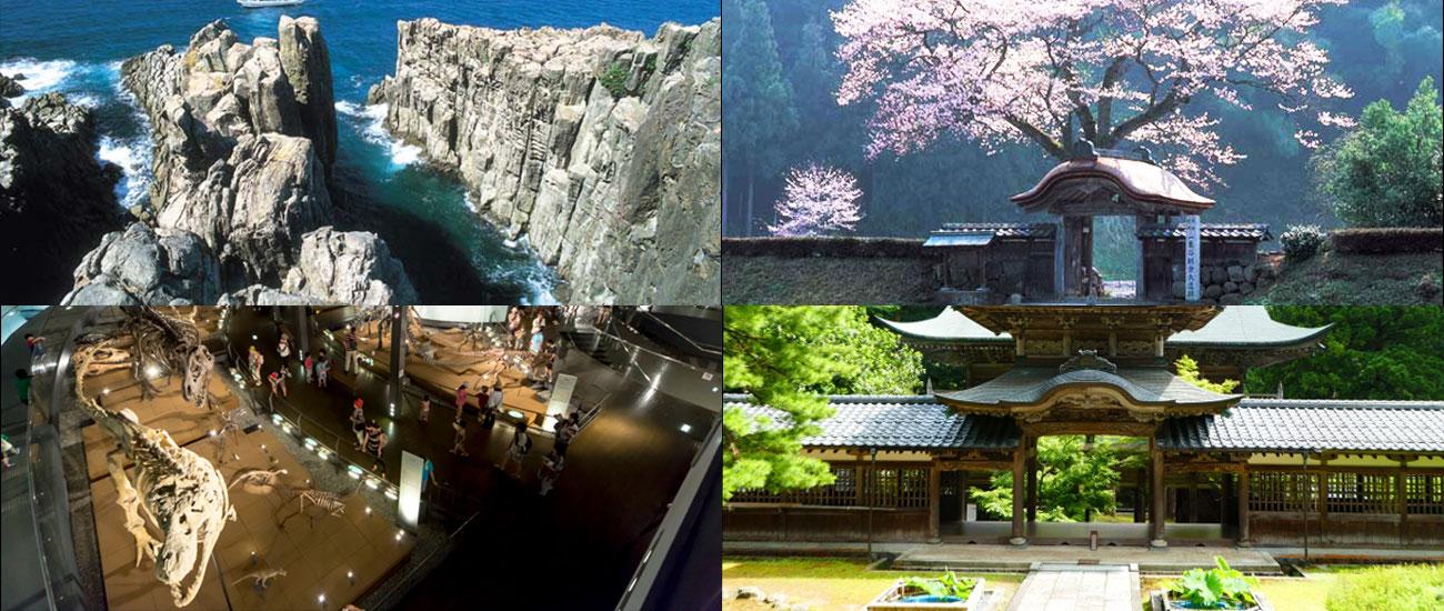 恐竜博物館や永平寺の福井観光は日の丸タクシーへ