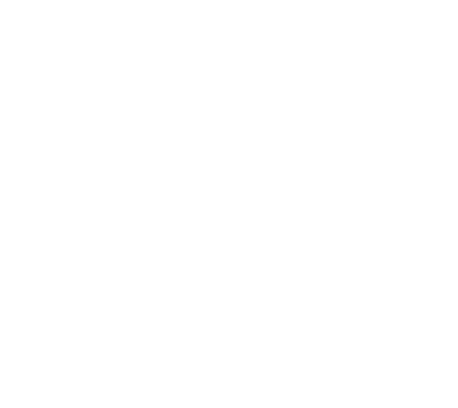 Icon Muskelaufbau