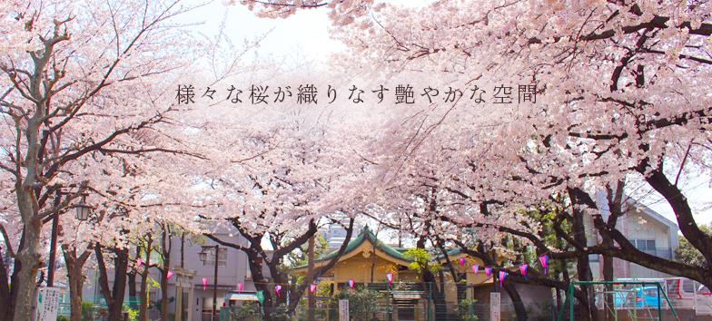 様々な桜が織りなす艶やかな空間