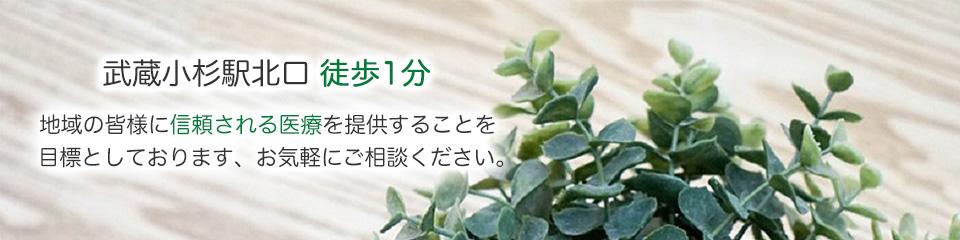 武蔵小杉駅北口徒歩1分 地域の皆様に信頼される医療を提供することを目標としております。