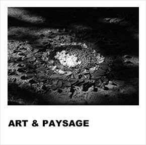 Art & Paysage Ecomusée du Véron