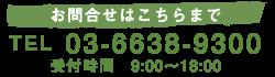 TEL.03-6638-9300