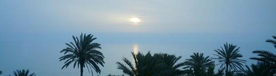 auswandern tunesien
