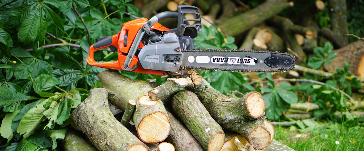 Tree Felling In Worcester