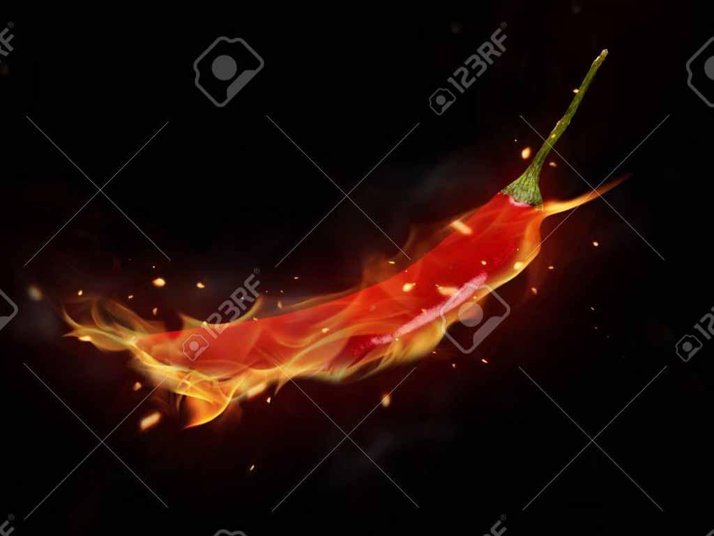 Spritzschutz für die Küche red hot Chili
