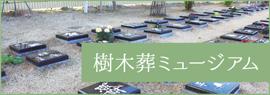 樹木葬ミュージアム