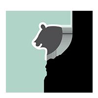Haupstadtpfoten – Zubehör für Haustiere