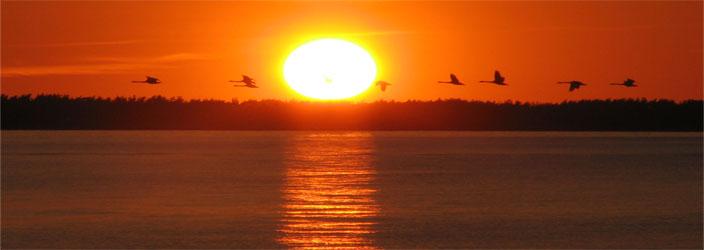 Prerow-Sonnenuntergang