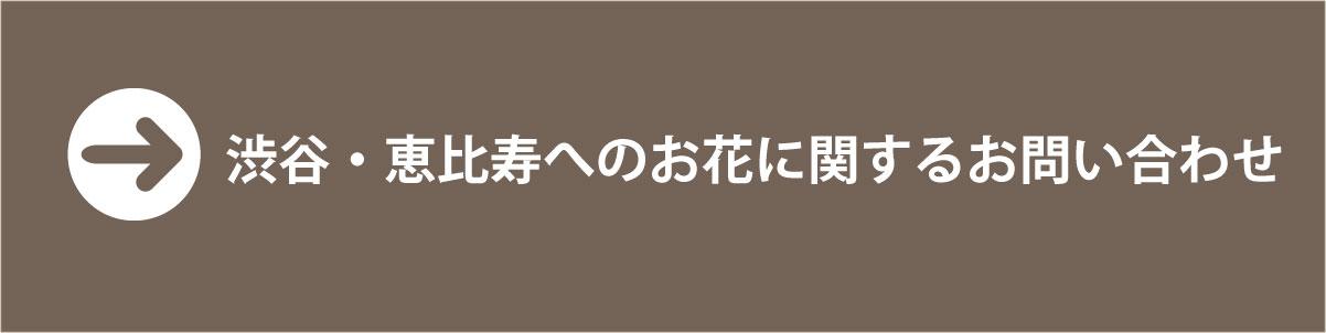 渋谷・恵比寿のお花に関するお問い合わせはコチラ