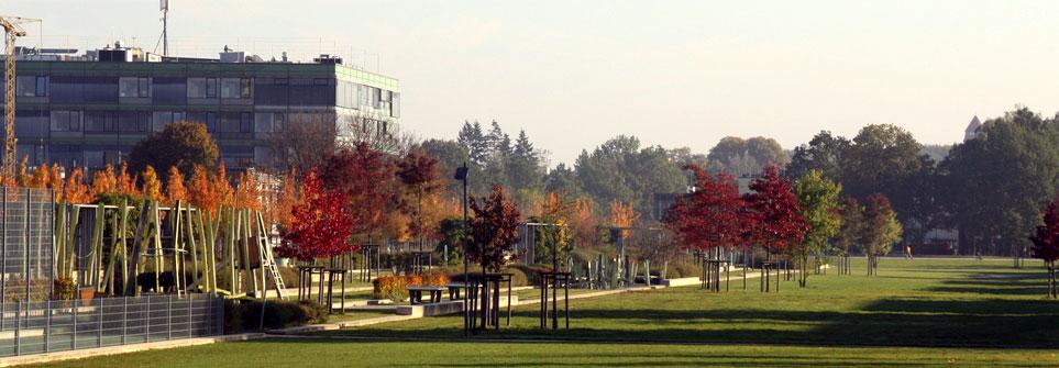 Carlebachpark