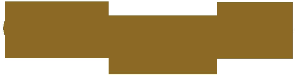 logotyp produktu jakim jest gont bitumiczny amerykańskiej firmy GAF z linii Camelot 2