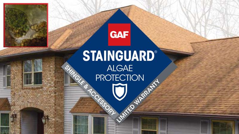 mały baner przedstawia technologię stainsGuard ochrona przed mchem w pokryciach dachowych gaf