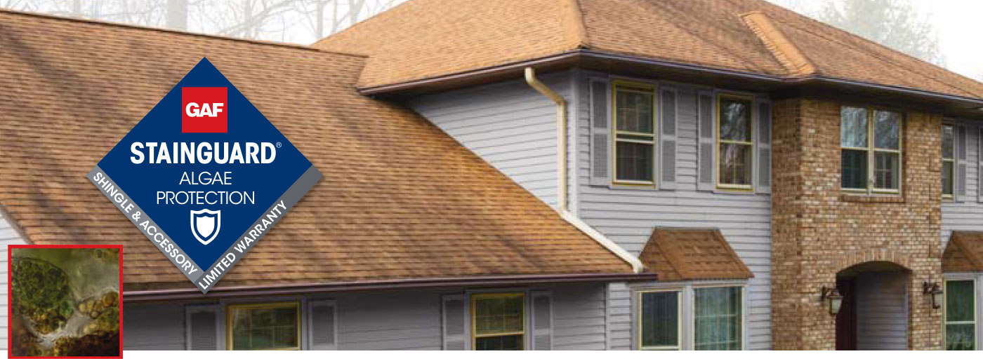dyży baner stain guard jest ochroną pokrycia dachowego na porost mchu w gontach GAF Timberline HDZ