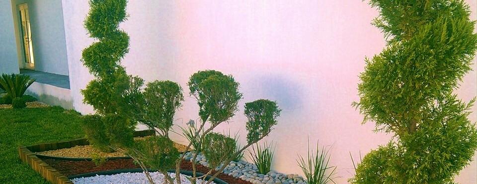 Dise o y construccion de jardines jardines monterrey for Diseno jardines sin pasto