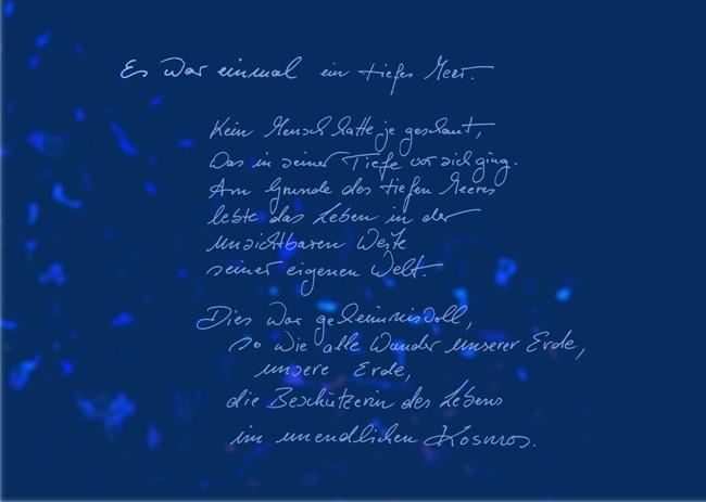 NasenundAugenundOhrenMuschelBuch Branko Stahl Märchen Romane Lyrik